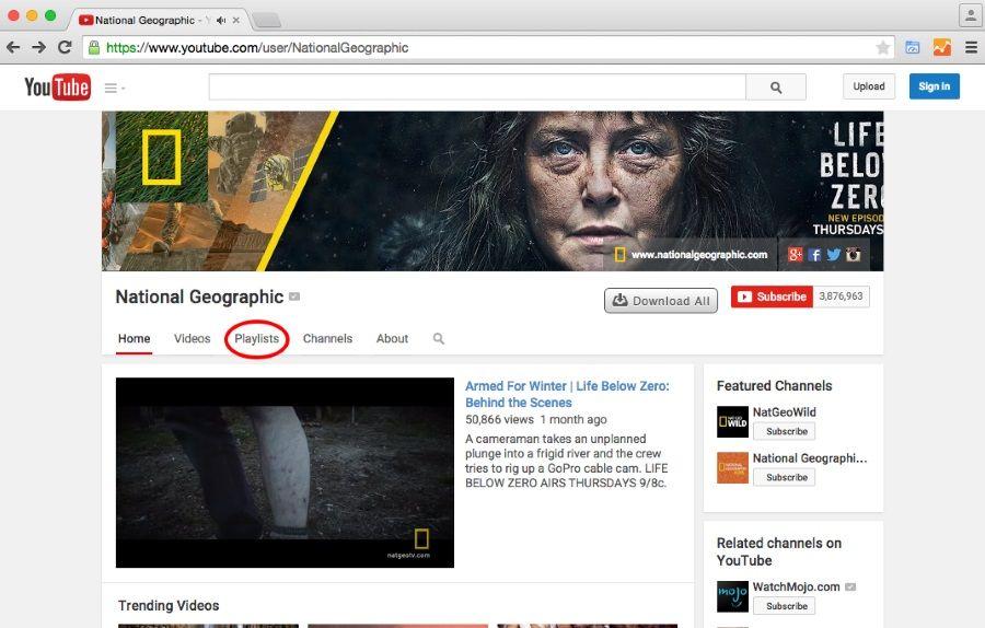 YouTube Playlist Wall